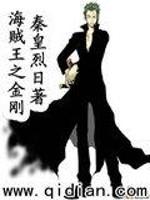 《海贼王之金刚》小说封面