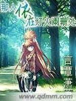 《那人依在灯火阑珊处》小说封面