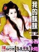《我的妹妹王语嫣》作者:尽欢无忧岁月