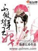 《不做替身王妃》小说封面