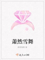 《萧然雪舞》小说封面