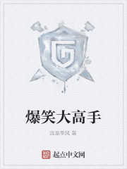 《爆笑大高手》小说封面