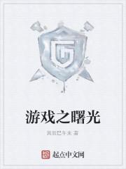 《游戏之曙光》小说封面