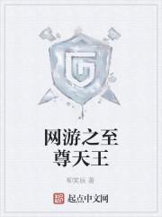 《网游之至尊天王》小说封面