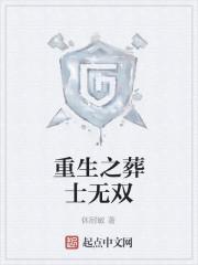 《重生之葬士无双》小说封面