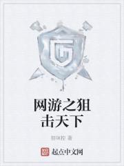 《网游之狙击天下》小说封面
