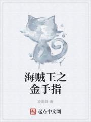 《海贼王之金手指》小说封面