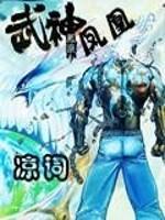 《武神凤凰》小说封面