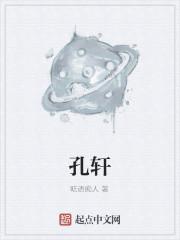 《孔轩》小说封面