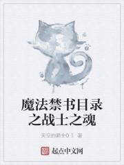 《魔法禁书目录之战士之魂》作者:天空的骑士01