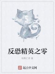 《反恐精英之零》小说封面