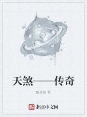 《天煞——传奇》小说封面