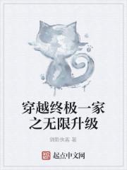 《穿越终极一家之无限升级》小说封面