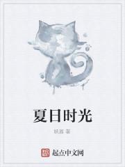 《夏日时光》小说封面