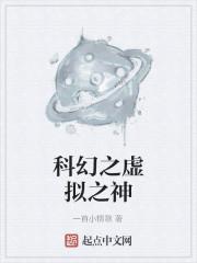 《科幻之虚拟之神》小说封面