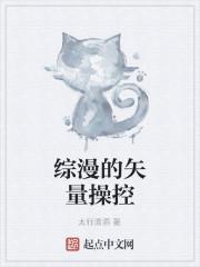 《综漫的矢量操控》小说封面