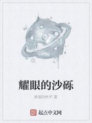 《耀眼的沙砾》小说封面