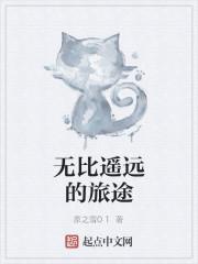 《无比遥远的旅途》小说封面