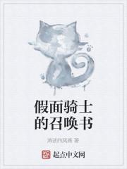 《假面骑士的召唤书》小说封面