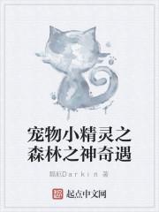 《宠物小精灵之森林之神奇遇》小说封面