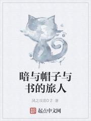 《暗与帽子与书的旅人》小说封面