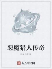 《恶魔猎人传奇》小说封面