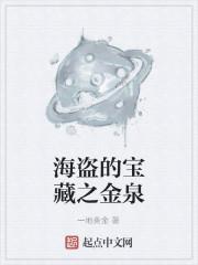 《海盗的宝藏之金泉》小说封面
