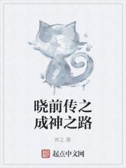 《晓前传之成神之路》小说封面