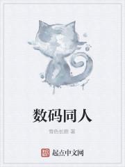《数码同人》小说封面