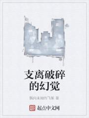 《支离破碎的幻觉》小说封面
