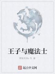 《王子与魔法士》作者:熊猫大侠v5