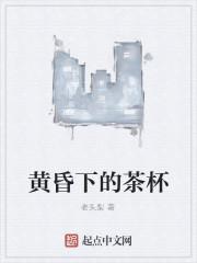 《黄昏下的茶杯》小说封面