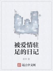 《被爱情驻足的日记》小说封面