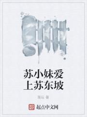 《苏小妹爱上苏东坡》作者:莲坛