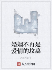 《婚姻不再是爱情的坟墓》小说封面