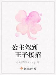 《公主驾到王子接招》小说封面