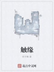 《触缘》小说封面