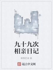 《九十九次相亲日记》小说封面