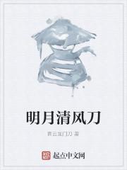 《明月清风刀》作者:青云龙门刀