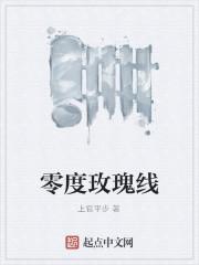 《零度玫瑰线》小说封面