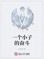 《一个小子的奋斗》作者:大大田