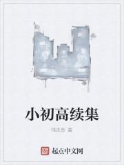 《小初高续集》作者:伟连东