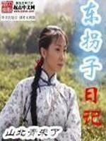 《东拐子日记》作者:山北青未了