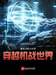 《穿越机战世界》作者:魔枪龙骑士