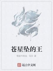 《苍星坠的王》作者:雪夜玛奇朵.QD