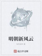 《明朝新风云》作者:独竹成林