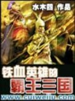 《铁血英雄的霸王三国》作者:水木四