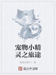 《宠物小精灵之旅途》作者:寂寞空虚01