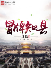 《冒牌知县》作者:沐轶