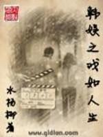 《韩娱之戏如人生》作者:水杨柳